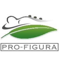 pro-figura
